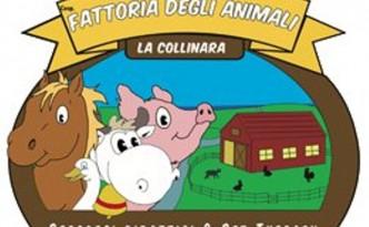 """Fattoria """"La Collinara"""""""