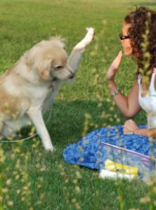 Displasia e Pet Therapy