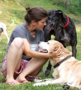 Alice e Loko, adottato grazie a Pet Levrieri