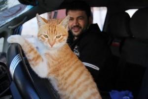 Alaa e il suo gatto Ernesto - Foto di Mohammad Alaa Aljaleel
